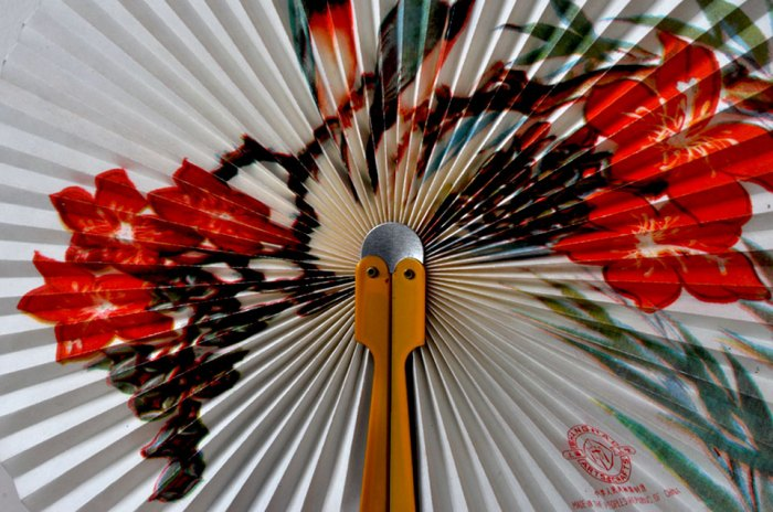 Chinese Paper Fan detail