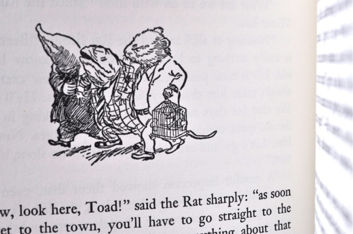Book WInd in the Willows