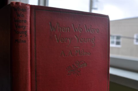 Book When We Were Young